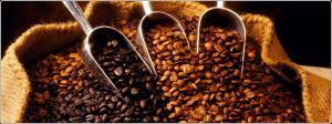 C-Shore International Coffee